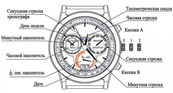 что означает если дома стоят часы время действия